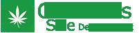 csite.net